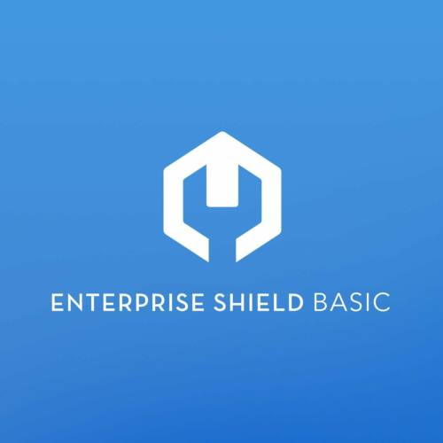 Enterprise Shield Basic biztosítás DJI M210 V2 drónhoz